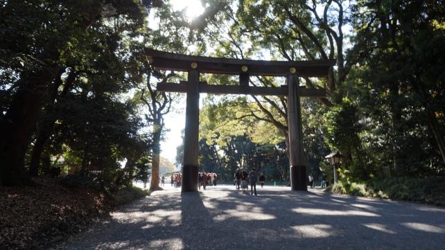 Giant Torri gate