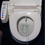 Toilet in action